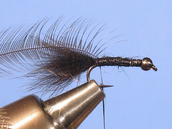 Baby Woolly Bugger - Step 4