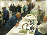 Swedish Fishingfair 2011
